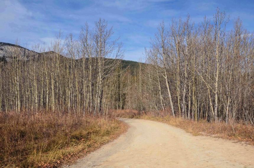 Prairie View Mountain Trail Kananskis Alberta