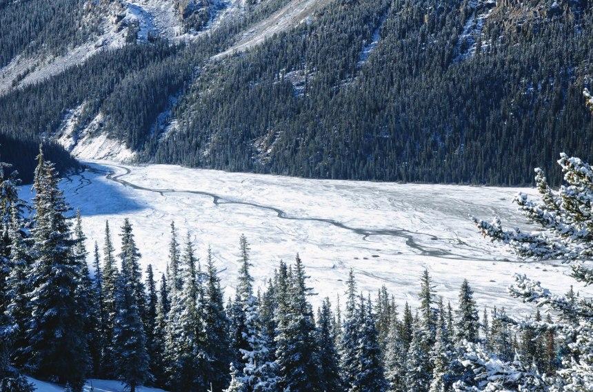 Alberta Canada roadtrip Banff Bow Summit 3