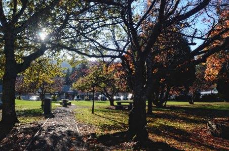 a park in Salt Spring Island